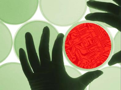 La materia Ingeniería Metabólica tiene como fin que los y las estudiantes adquieran destrezas en el desarrollo de técnicas bioinformáticas para la comprensión y caracterización global de la biología de un sistema y la optimización de cepas con fines biotecnológicos.